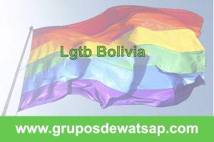 grupo de whatsapp lgtb Bolivia